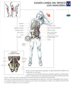 Abdominales oblicuos con mancuerna - InfoCulturismo.com