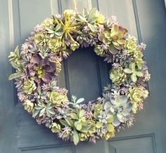 absolutely beautiful things: Christmas Wreaths Australian Style made from succul. absolutely beautiful things: Christmas Wreaths Australian Style made from succulents. Easter Wreaths, Christmas Wreaths, Australian Style, Australian Christmas, Aussie Christmas, Swag Ideas, Summer Christmas, Christmas Ideas, Lavender Wreath