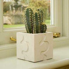 Small Puzzle Garden Stones, Garden Pots, Potted Plants, Cactus Plants, Contemporary Planters, Concrete Projects, Small Succulents, Vases, Cast Stone