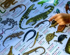 A Galactically Good Nature Poster GiveAway… –