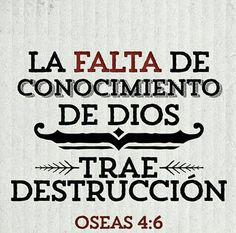 «Mi pueblo fue destruido, porque le faltó conocimiento.» Oseas 4:6