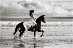 To ride in to your wedding on a horse on the beach...what a dream. #weddinginvitations