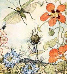 Макс Динглер Кузнечик и цветы 12 сказок Иллюстрации Э.Венц-Виетор Германия, 1924 год