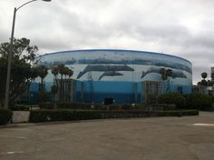 Wylands First Outdoor Comissioned painting on The Long Beach Arena in Long Beach, CA