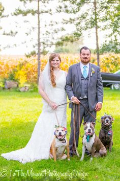 Dogs got dressed up in flowers too. Wedding Photos, Wedding Ideas, Dog Wedding, Get Dressed, Real Weddings, Labrador Retriever, Dress Up, Couples, Wedding Dresses