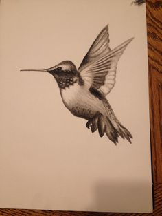 My charcoal hummingbird drawing.