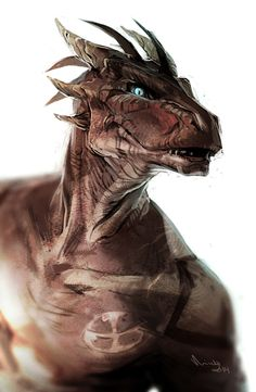 Dragonborn, Portrait, Barbarian, Bard, Cleric, Druid, Fighter, Monk, Paladin, Ranger, Rogue, Sorcerer, Warlock, Wizard