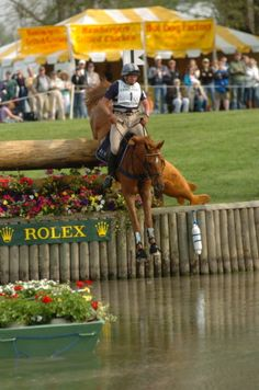 Teddy O'Connor... Super Pony!  He is greatly missed by the eventing world. He inspired me to get my 14.1 hh mare after 2 16+ hh horses.