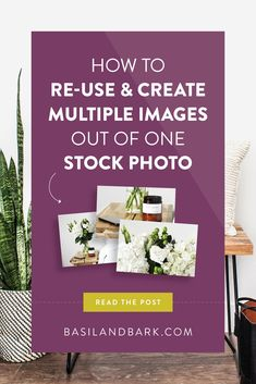 """Save your money and start repurposing your stock photos by following these easy tips and tricks. If you're a blogger or creative entrepreneur investing in stock photography for your business, you'll want to consider these things before you press the """"buy"""" button and end up with one-and-done stock imagery."""