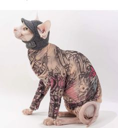 Sphynx Cat Clothes - Purple Butterfly Tattcat™ Long Sleeved Shirts - Chinese Crested Dog Fashions - Pet Shirts - Make Wonderful Gifts 1111 Dog Pee Pads, Puppy Pads, Costume Chat, Cat Costumes, Devon Rex, Chat Sphynx, Hairless Cats, Moda Animal, Videos Kawaii
