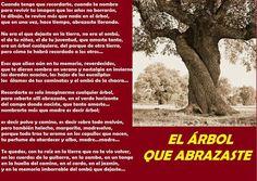 EL ARBOL QUE ABRAZASTE - THE TREE YOU HUGGED