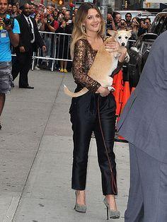 Drew Barrymore & Pet Pooch Douglas