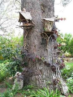 fairy houses on a tree!!     @Stormy Weaver