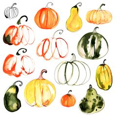 Margaret Berg : fall / halloween: Pumpkin Patch