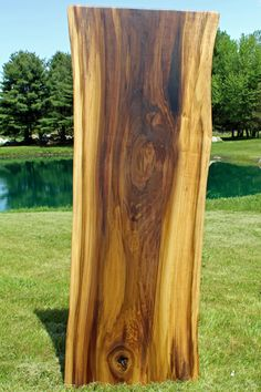Natural edge english elm and alabaster stone semi finished for Finished wood slabs