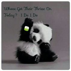 If you don't have your thrive patch on today take a look at what you been missing. Www.kspindle.le-vel.com