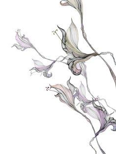 Interior Design Books: Love Letter to Karin Meyn - Hello Lovely Botanical Art, Botanical Illustration, Illustration Art, Interior Design Books, Book Design, Arte Shiva, Fleurs Art Nouveau, Floral Illustrations, Art Plastique