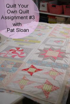 Pat Sloan Quilt Your Own Quilt assignment 3 button Love, love, love it!!