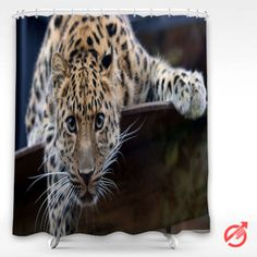 Cheap Leopard keep watch Shower Curtain