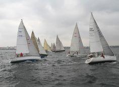ESPAÑA: Trofeo Dyreco 2013.