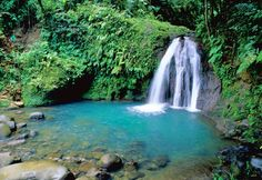 Guadeloupe: a paradise found, with a French twist Dream Vacations, Vacation Spots, Places To Travel, Places To See, Khao Lak Beach, Lamai Beach, French West Indies, Destinations, Waterfalls