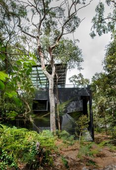 Donaldson House is Surrounded by Trees and has Views of the Water and is Designed for an easy and Sustainable Lifestyle
