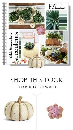 """""""Fall Table Decoration"""" by queenofsienna ❤ liked on Polyvore featuring interior, interiors, interior design, home, home decor, interior decorating, K&K Interiors and succulents"""