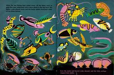 Dahlov Ipcar. Deep Sea Farm via Once Upon A Bookshelf