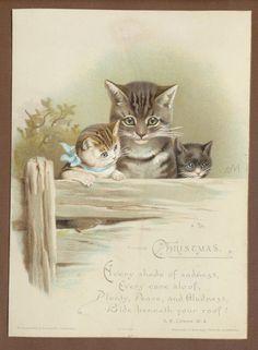 C3090 Good Victorian H&F Xmas Card: Cats, Helena Maguire