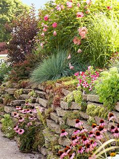 This Planting Guide Solves All of Your Sloped Garden Problems - front yard landscaping ideas simple Garden Solutions, Sloped Garden, Easy Landscaping, Plants, Rock Garden Design, Easy Care Plants, Garden Problems, Rock Garden, Landscaping A Slope