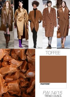 CLOSE Trend Council:  FW '14'15 Must Have Color Directive - Toffee