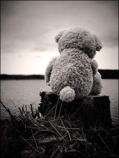 Alone Pictures And Photos. Tatty Teddy, My Teddy Bear, Cute Teddy Bears, Teddy Bear Pictures, Bear Wallpaper, Jolie Photo, Black And White Photography, Toys, Animals