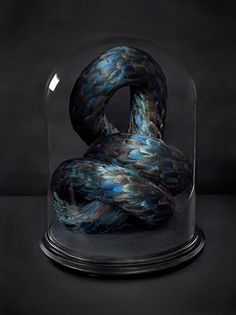 Kate MccGwire.  Taxidermy, Art, Feathers, Blue, Turquoise, Taxidermy Glass, Dome, Dark. Surreal. www.origin-of-style.com