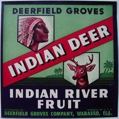 INDIAN DEER Vintage Wabasso Florida Citrus Crate Label, older