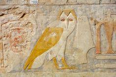 Owl hieroglyph detail, Hatshepsut Temple Egypt