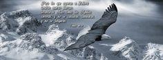 """Como las águilas - Isaías 40:31 """"Pero los que esperan a Jehová tendrán nuevas fuerzas; levantarán alas como las águilas; correrán, y no se cansarán; caminarán, y no se fatigarán."""""""