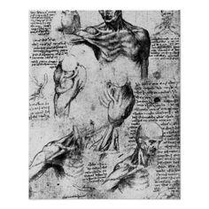 Drawing  by Leonardo da Vinci Posters
