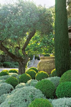 Look inside some of the most beautiful private gardens of the Mediterranean.