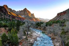 How Forest Fragmentation Threatens Biodiversity | Zion National Park. Photo credit: Joe Parks / Flickr