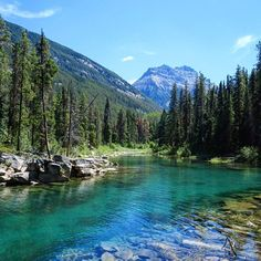 Alberta's Swimming Hole Hike Is A Refreshing Activity For Summer 2019 - Narcity Canada Travel, Canada Tourism, Columbia Travel, Canada Trip, Visit Canada, Hiking Site, Places To Travel, Places To See, Alberta Travel