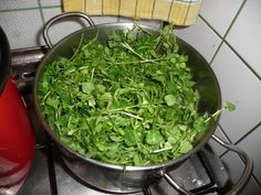 Lettuce, Spinach, Health And Beauty, Health Fitness, Keto, Vegetables, Food, Van, Garden