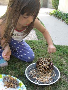 Peanut Butter/ Pine Cone Bird Feeder by  themavenofsocialmedia #Bird_Feeder _Peanut_Butter_Piine_Cone_Bird_Feeder #themavenofsocialmedia