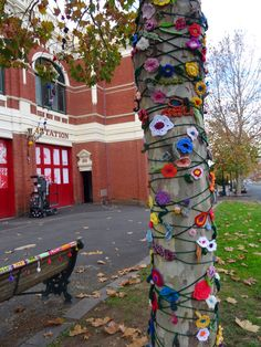 Wrapped tree and a cosy seat outside Dudley House and the old Fire Station Bendigo.