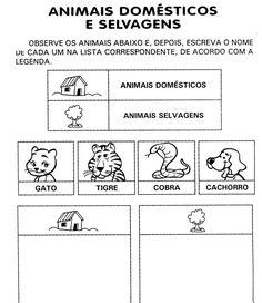 Atividades 1° ano - animais - domésticos e selvagens