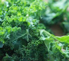 Kadeřavá kapusta je lahodná zimní listová zelenina
