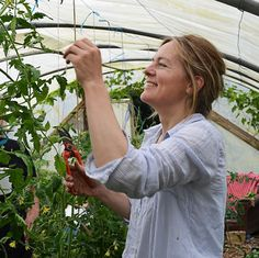 www. culture-et-utilisation-du-basilic. Tomato Garden, Vegetable Garden, Culture Tomate, Garden Online, Permaculture Design, Healthy Environment, Plantation, Horticulture, Outdoor Gardens