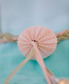 Napkin details... we braided leather and used a sea urchin shell as a bolo-tie sort of napkin ring. #eventdesign #alchemyfineevents #weddingstyle #weddinginspiration #wedstagram #tablescape #scottsdalewedding #instabride #instagood #instastyle #wedding #weddingflowers #napkintreatment #seaurchin #seashell