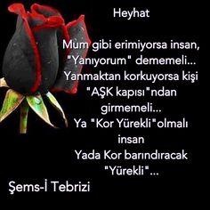 #tasavvuf # Şems-İ tebrizi