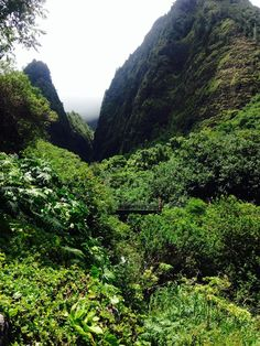West Maui Loop. While the Road to Hana has the reputation for being a harrowing road, the Kahekili highway around West Maui puts it to shame. While not as tropical, this drive around the West Maui Mountains offers spectacular views and glimpses into remote Hawaiian villages that have been much secluded from Maui tourism. But be warned…this road (especially the end closest to Wailuku) is a single narrow lane with a steep drop off in many places. Start out your day at the Iao Valley in Wailuku…