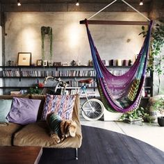 low couch  book shelves hammock town